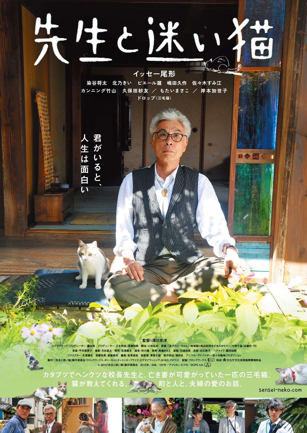 映画「先生と迷い猫」のネタバレ&あらすじと結末を徹底解説 深川栄洋